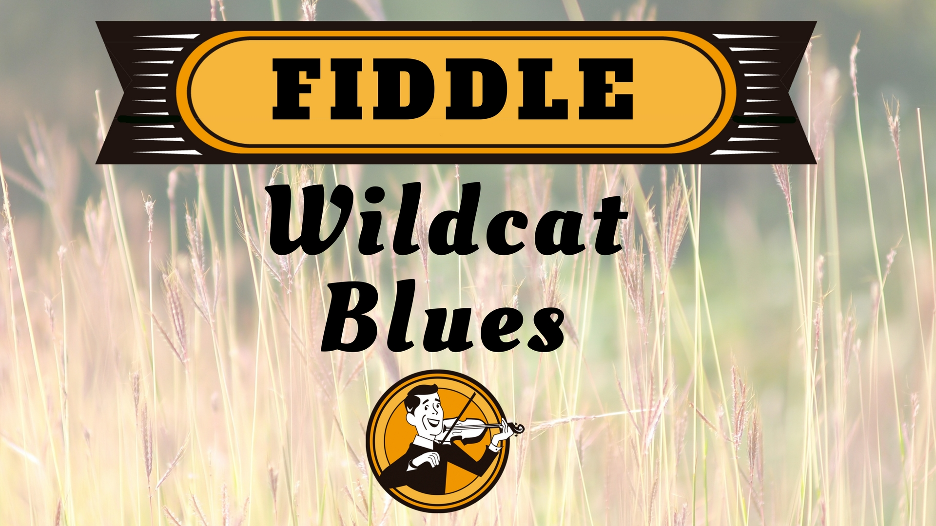 Fiddle Wildcat Blues