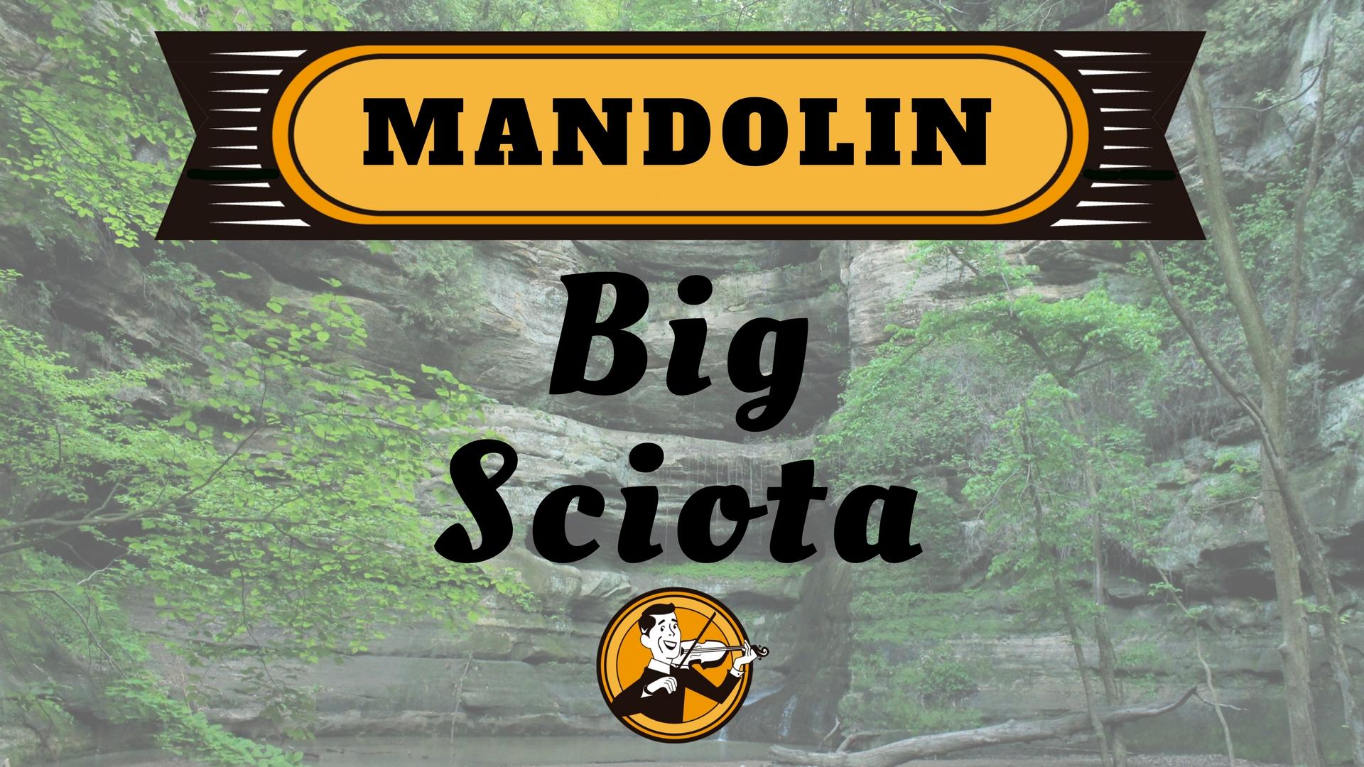 Mandolin Big Sciota