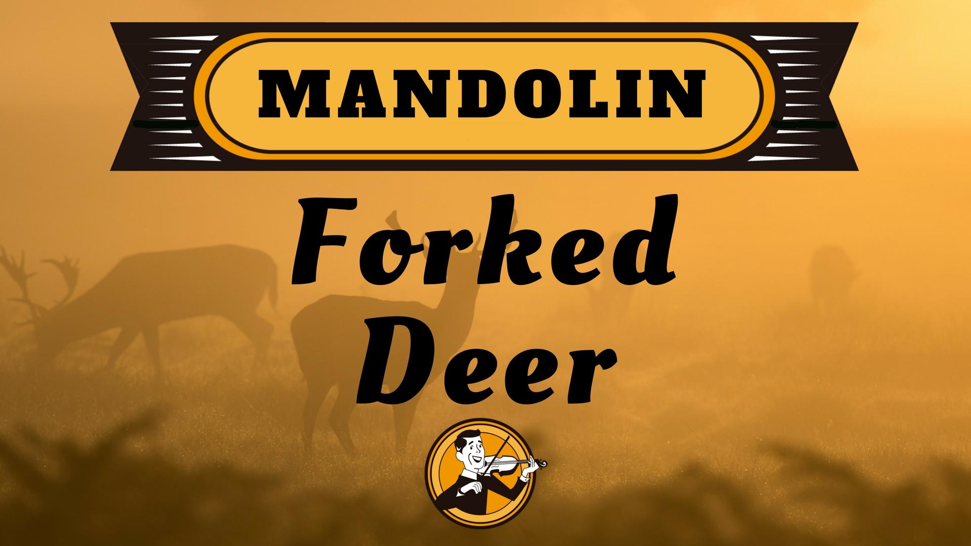 Mandolin Forked Deer